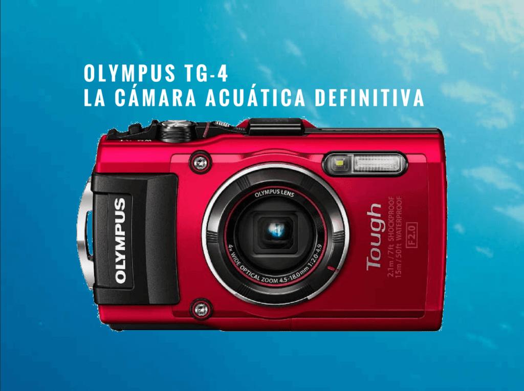 Olympus TG4. La cámara acuática definitiva