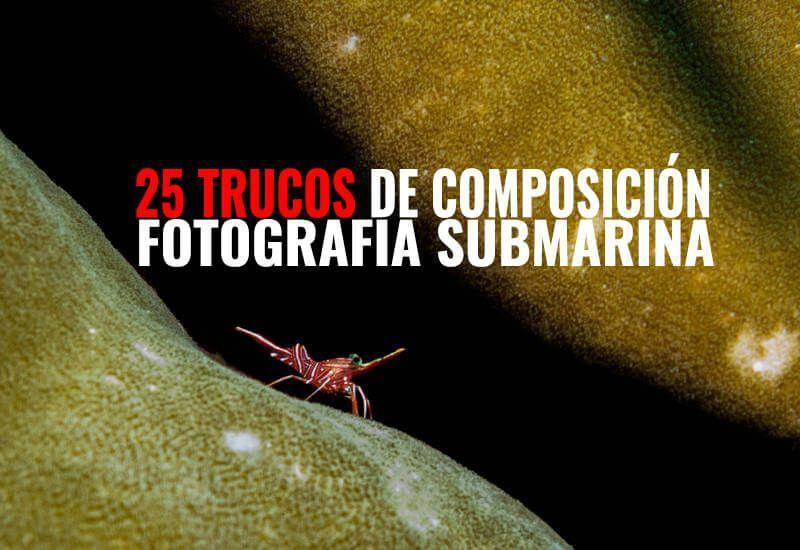 25-trucos-de-composicion-fotografia-submarina