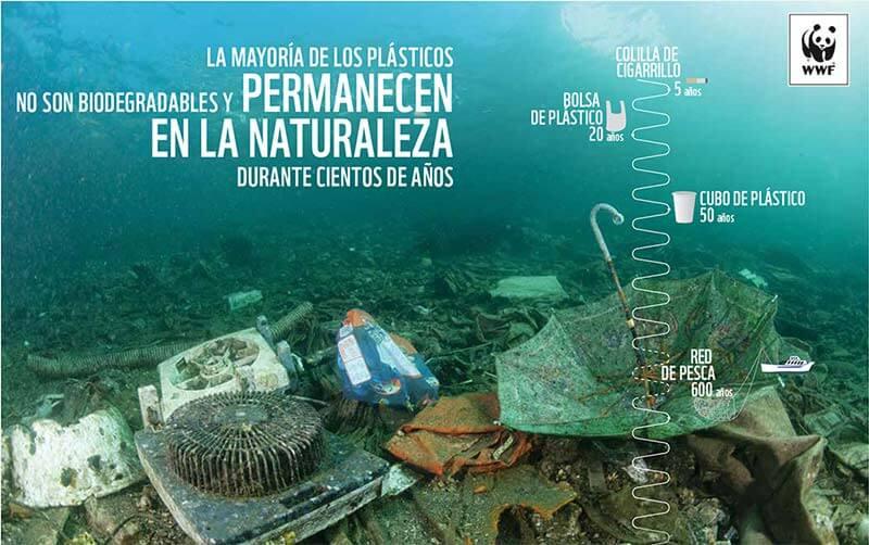 Plásticos en el mar un problema de todos