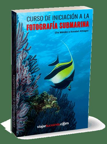 libro-pdf-curso-de-fotografia-submarina-1