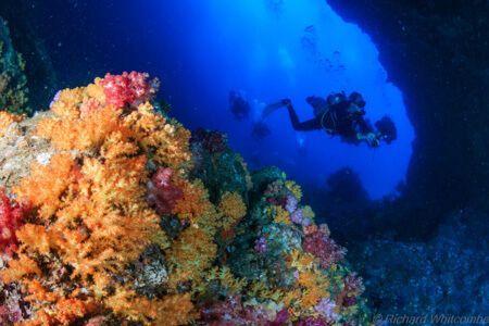 western-roccky-arch-similan-viajar-buceo-grupo-vida-a-bordo