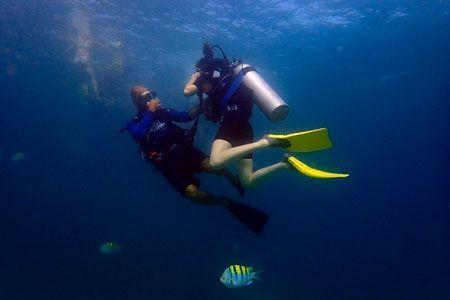 viajes de buceo a medida clienta Mexico