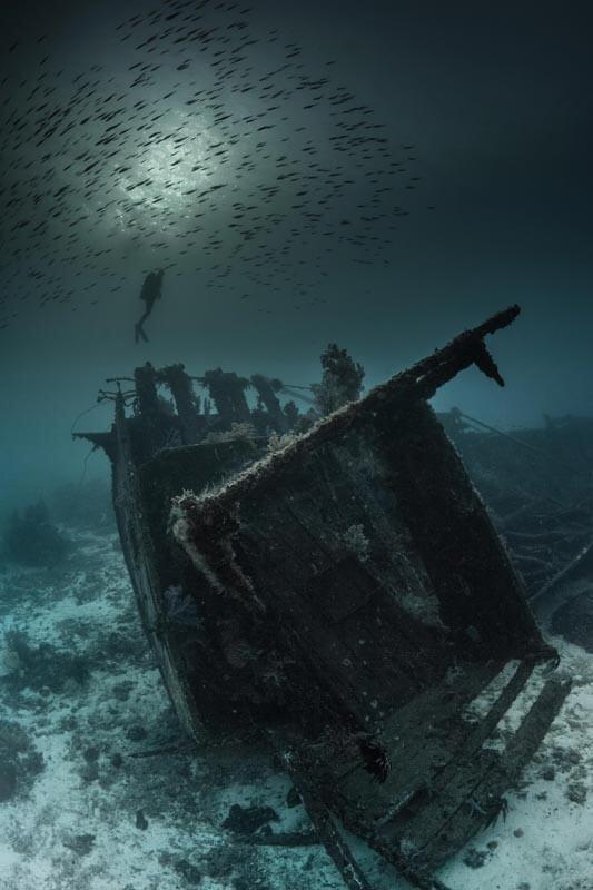 iluminacion-en-fotografia-submarina-pecio-luz-natural