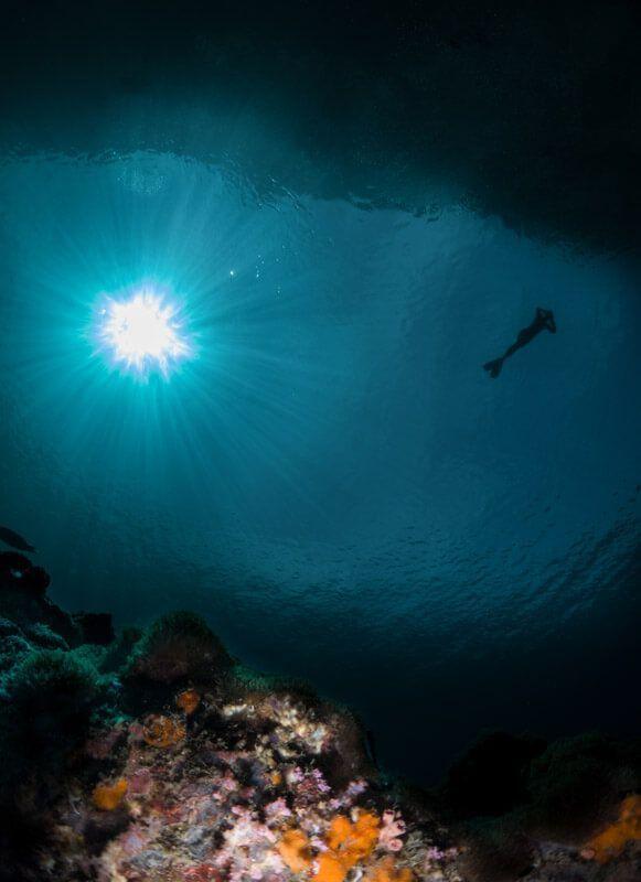 iluminacion en fotografia submarina