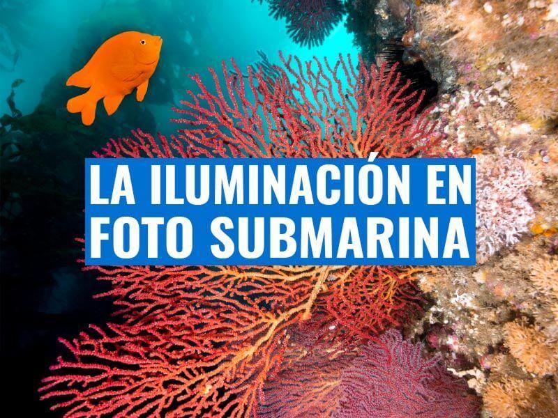 iluminación en fotografía submarina