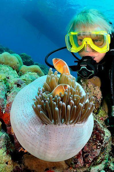 viaje de buceo lembeh y bunaken curso de fotografia submarina Anemonefish by Scott Johnson 2