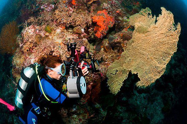 viaje de buceo a bali indonesia curso fotosub 8