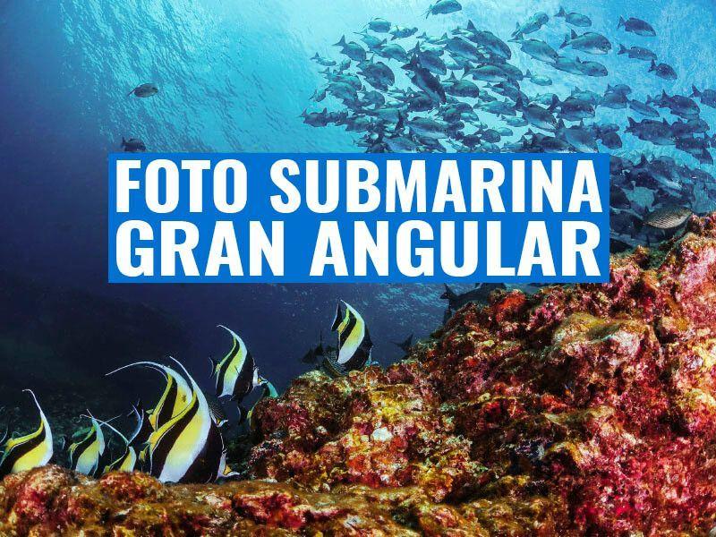 portada fotografia submarina gran angular