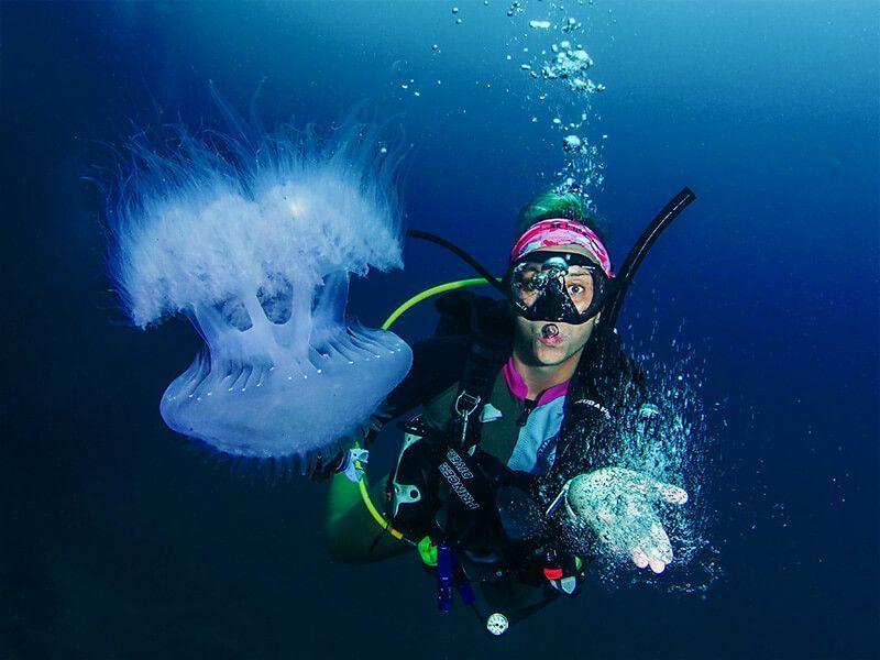 trabajar de fotografo submarino animal medusa