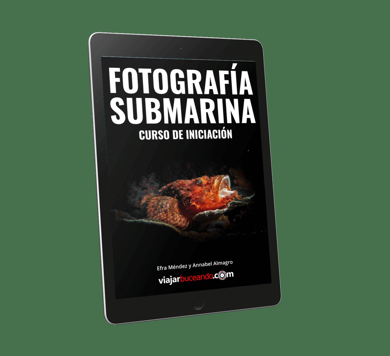 aprender fotografia submarina libro digital pdf