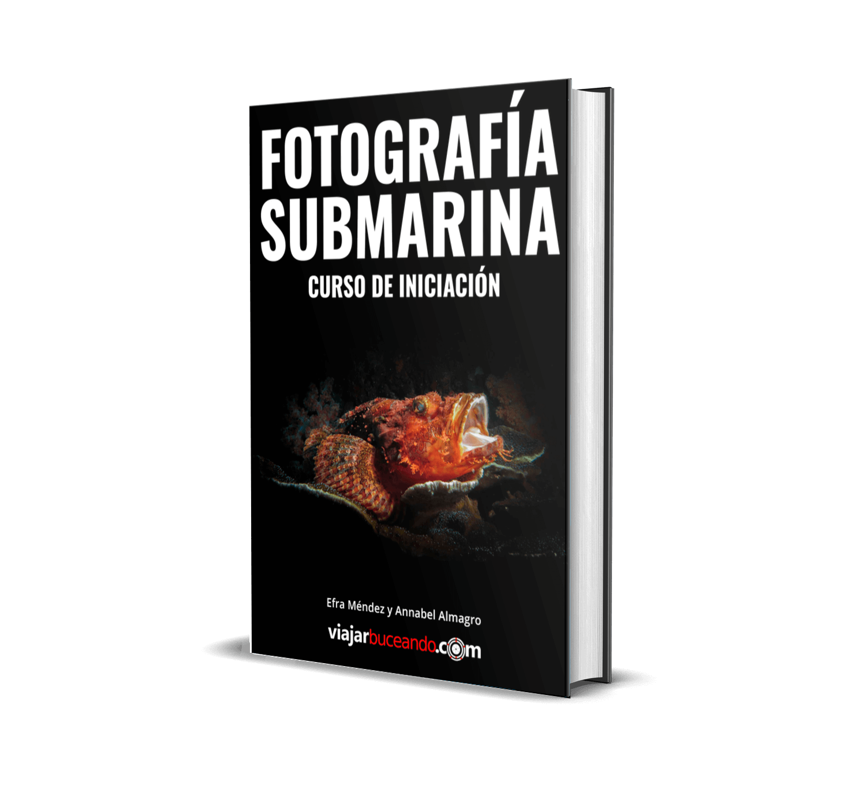 libro digital aprender fotografia submarina