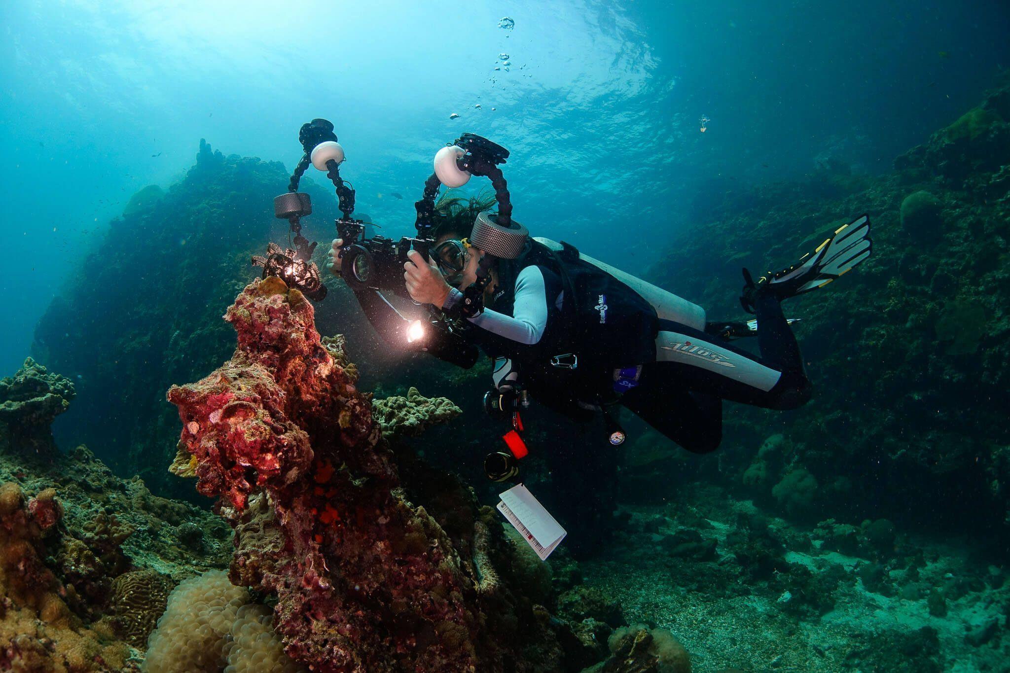 libro digital fotografia submarina