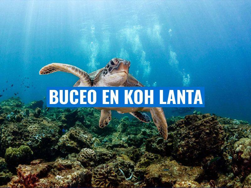 El buceo en Koh Lanta un destino que no te puedes perder