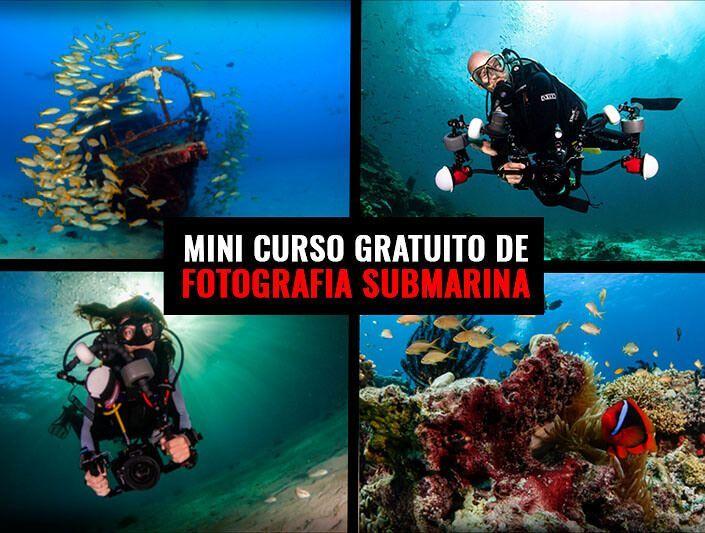 Mini Curso Gratuito Fotografía Submarina en Viajarbuceando entra ahora