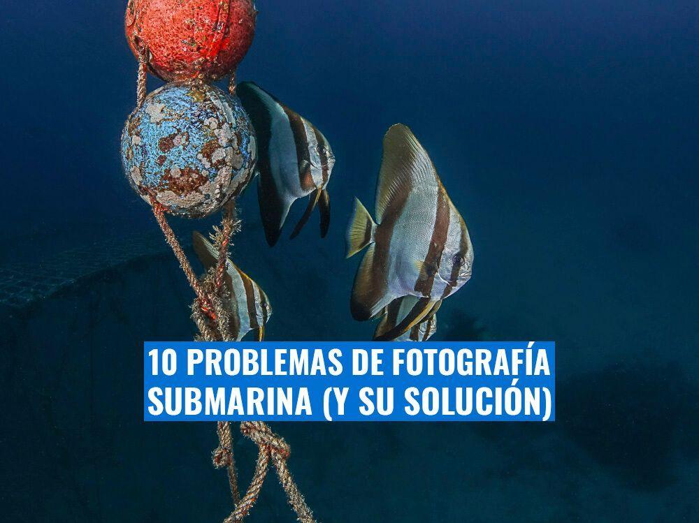 problemas de fotografia submarina comunes y su solucion