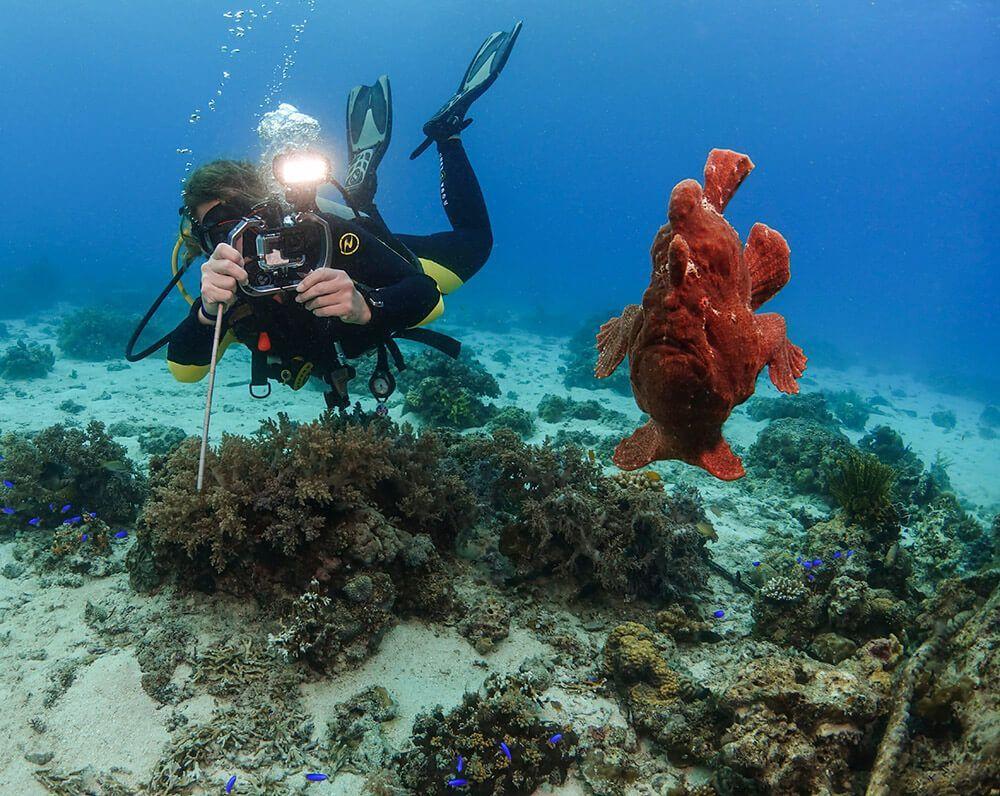problemas fotografia submarina flotabilidad imprescindible