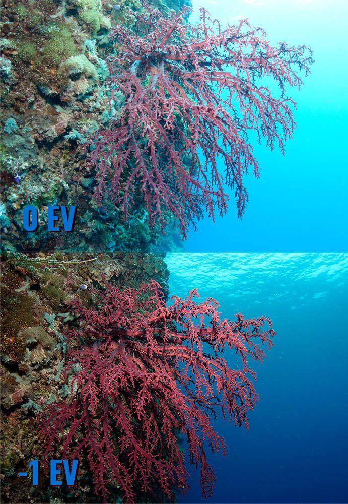 como usar el EV en fotografia submarina