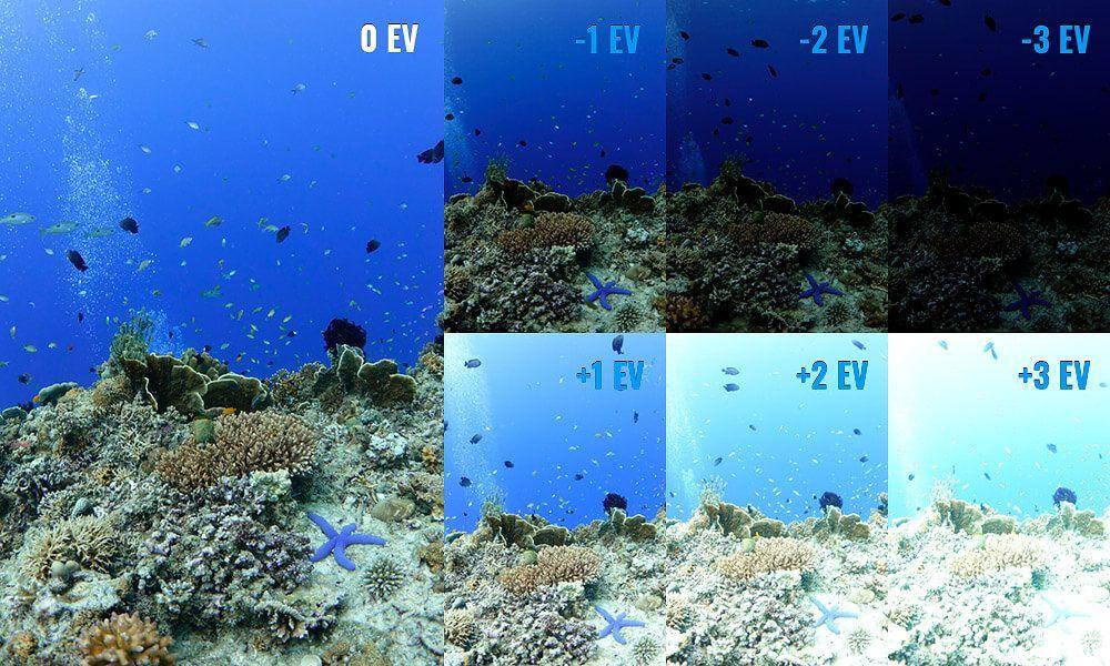 compensacion de la exposicion en fotografia submarina