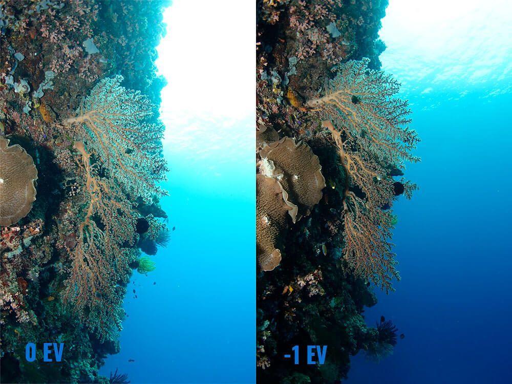 compensacion exposicion en fotografia submarina ejemplo contraluz EV