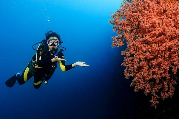 viaje de buceo Filipinas fotografia submarina fotosub (11)