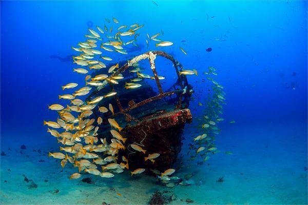 viaje de buceo Filipinas fotografia submarina fotosub (2)