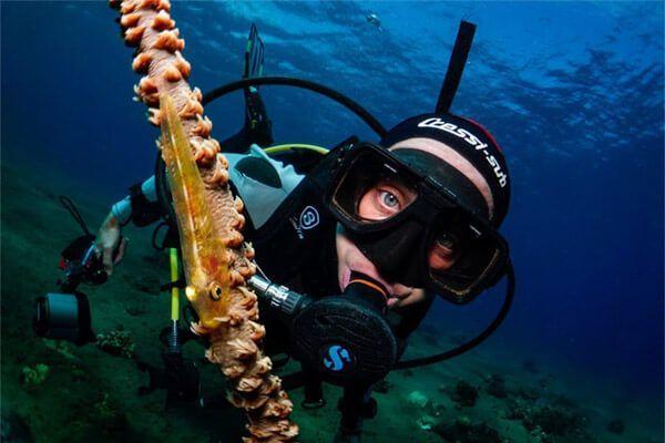 viaje de buceo Filipinas fotografia submarina fotosub (7)