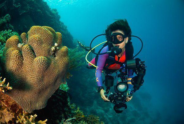 libro de viajarbuceando aprender fotografía submarina