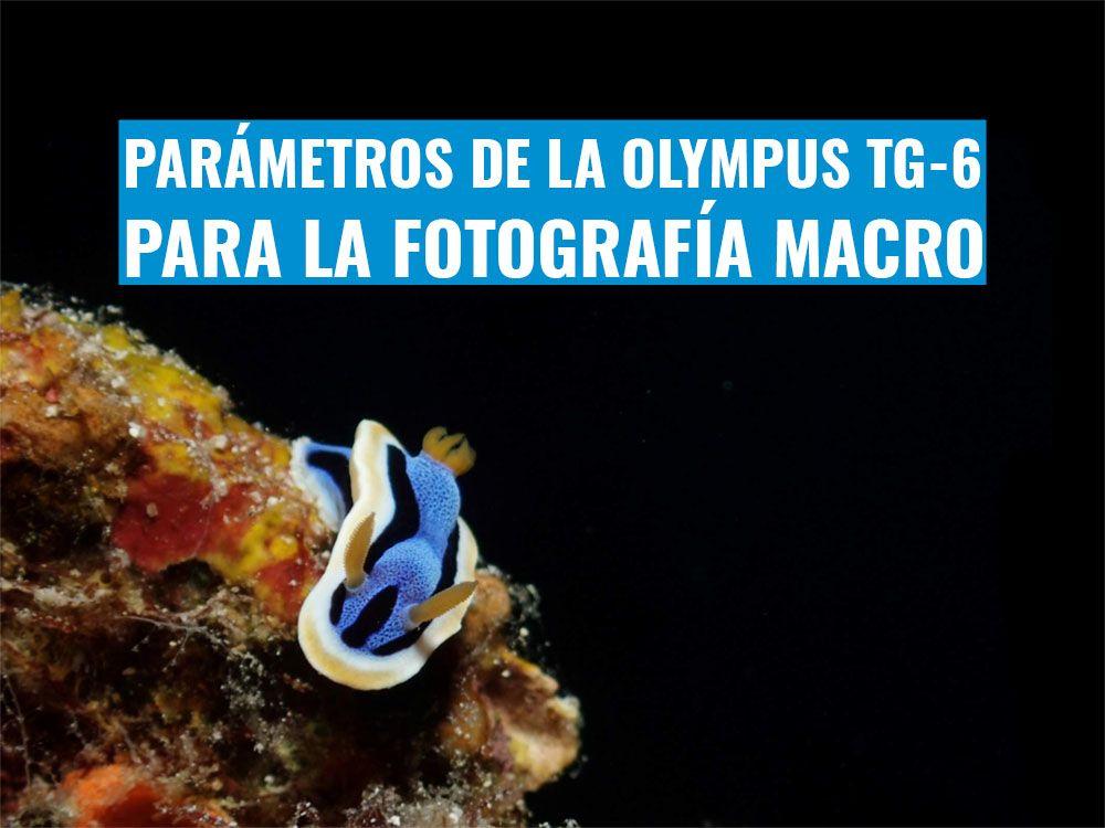 parametros de la tg6 para fotografia macro