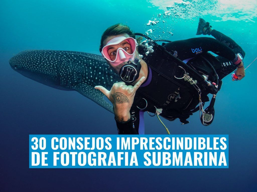 30 consejo de fotografia submarina imprescindibles
