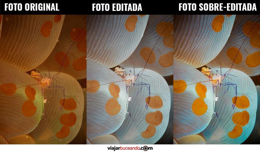 cómo editar fotografías submarinas - No edites en exceso tus fotos