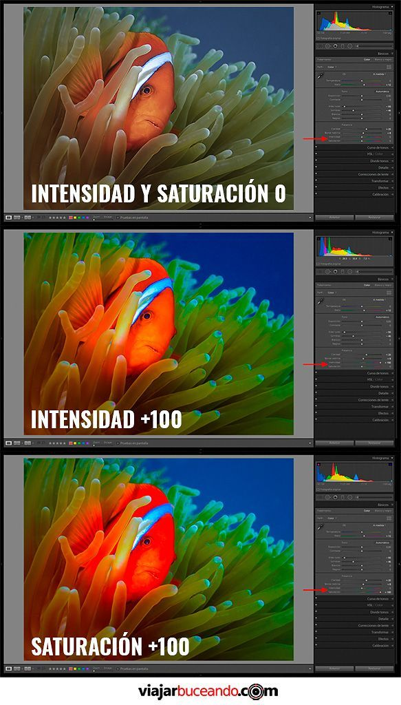 como editar fotografías submarinas saturación e intensidad