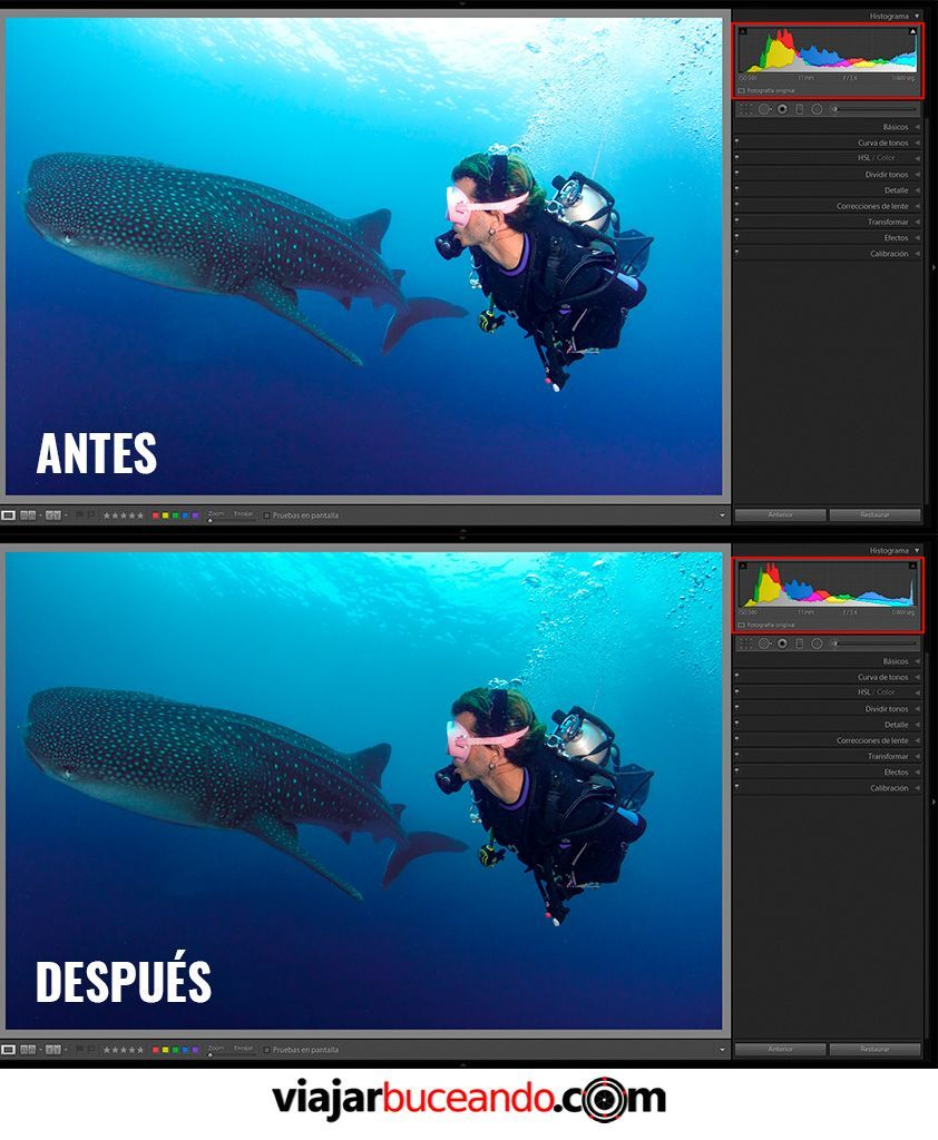 edicion de fotografias submarinas - altas luces