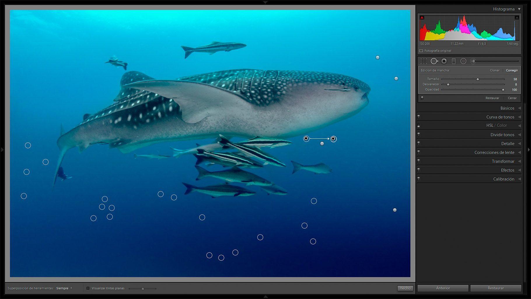 edicion de fotografias submarinas - eliminar manchas
