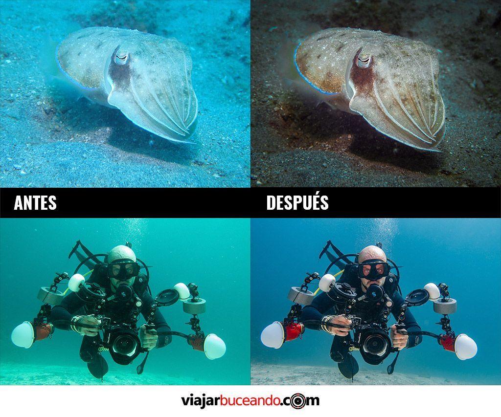 ejemplos de retoque de fotografias submarinas