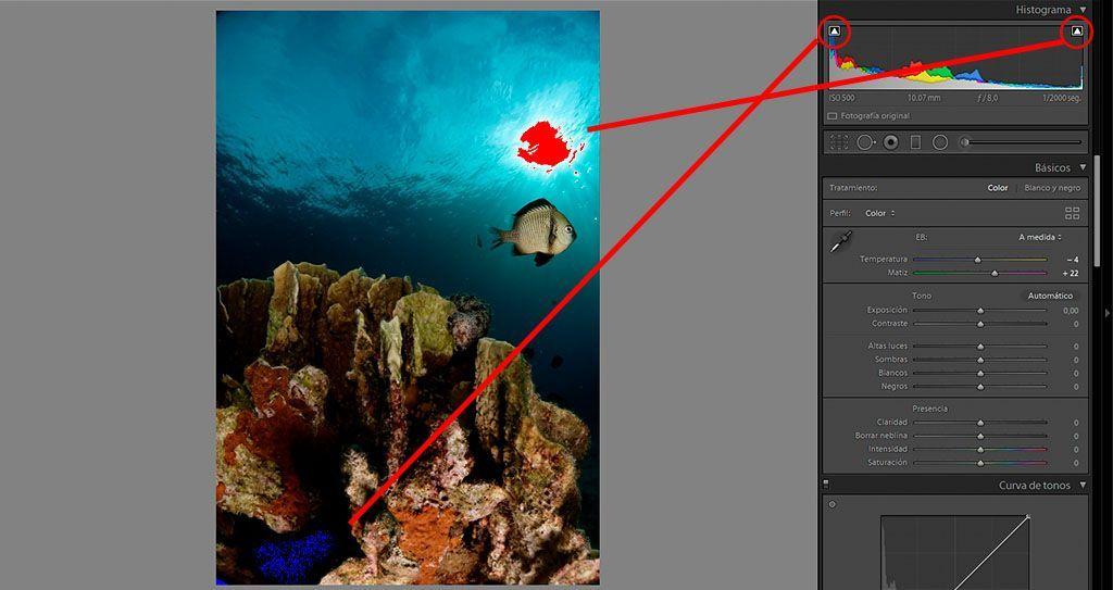 indicadores de recorte en lightroom leer el histograma de las fotografías submarinas