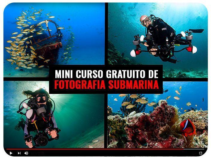 Mini Curso Gratuito Fotografía Submarina con Viajarbuceando