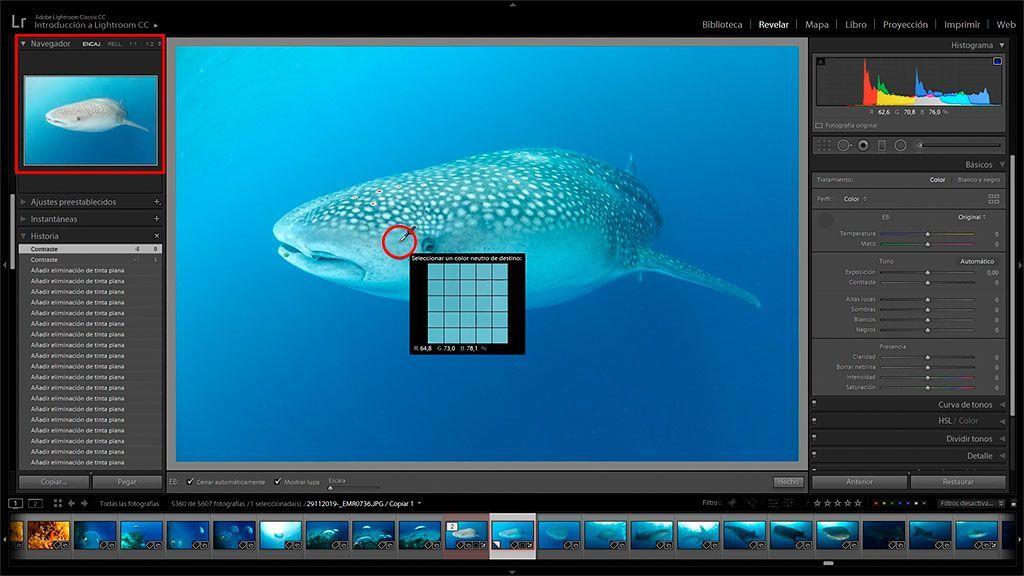 ajustar el wb en edicion para corregir el color de las fotos bajo el agua