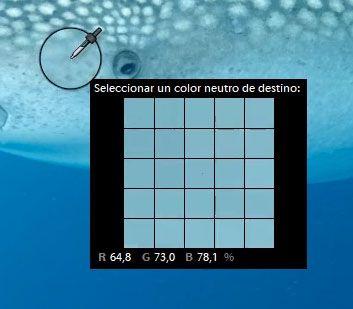 cuentagotas para hacer el wb en edicion de fotos submarinas