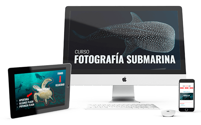 curso de fotografia submarina multidispositivo