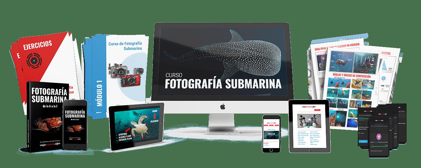 curso de fotografía submarina online