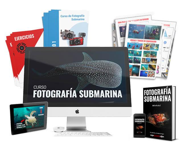 curso de fotografia submarina ONLINE
