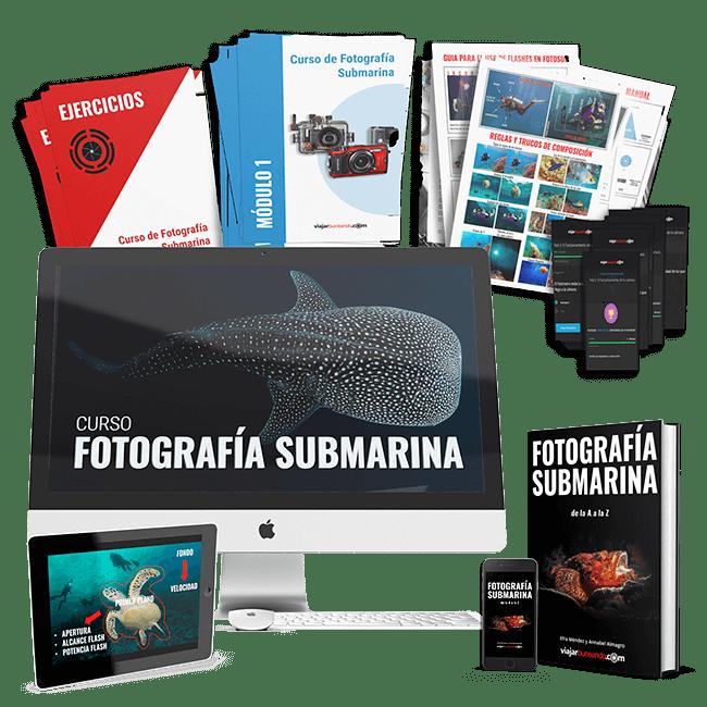 curso fotosub