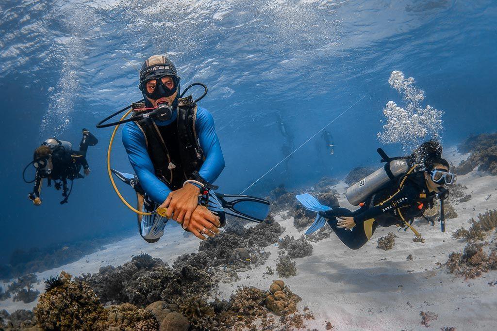 Guia de buceo fotografia submarina