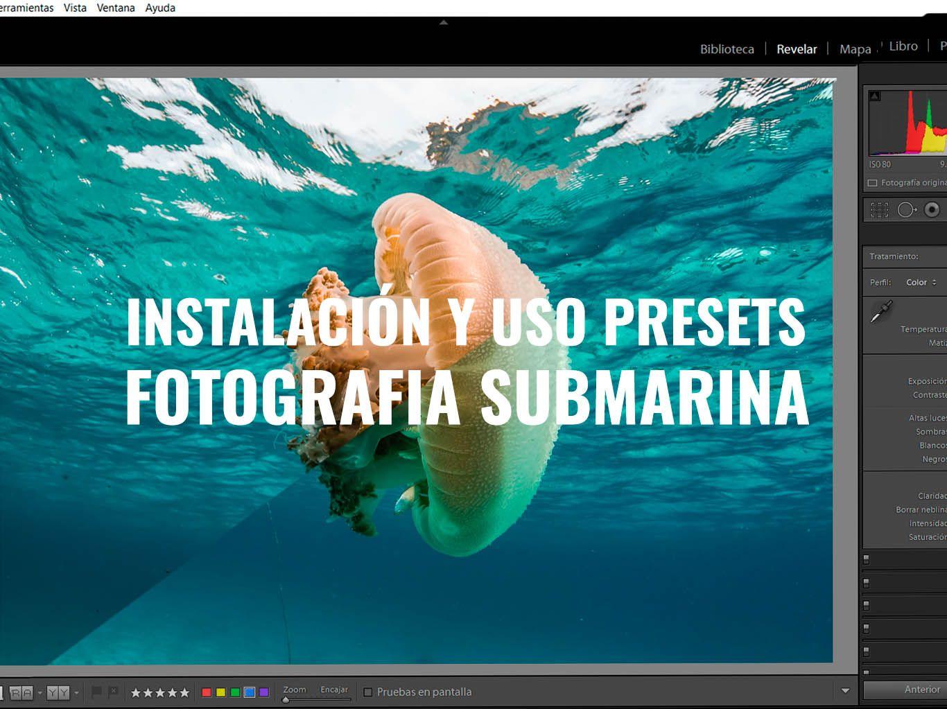 Interfaz de lightroom indicando donde instalar presets de fotografía submarina