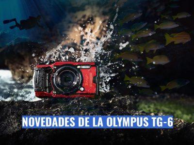 Reseña Olympus TG-6, novedades para fotografía submarina