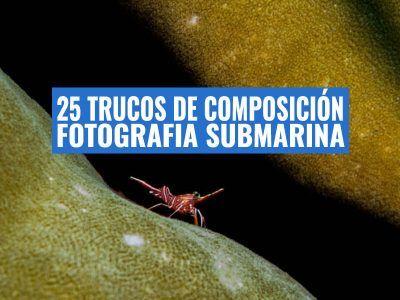 tips-de-composicion-fotosub-(1)-trucos-buceo
